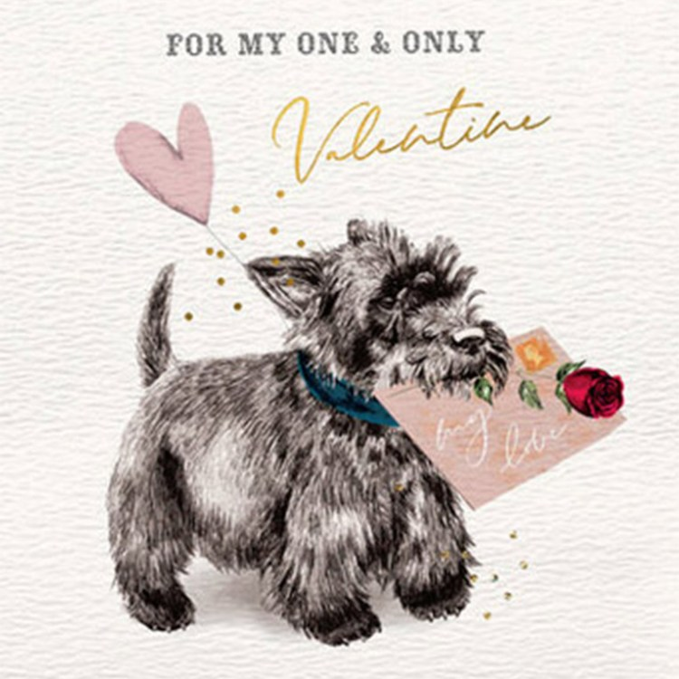 Cairn Terrier Valentines Day Card