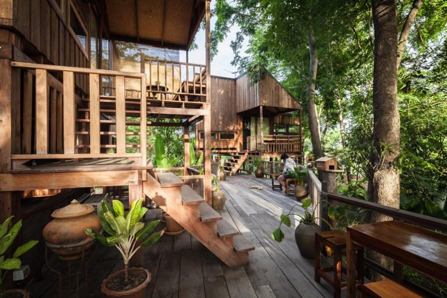 xây nhà trong rừng