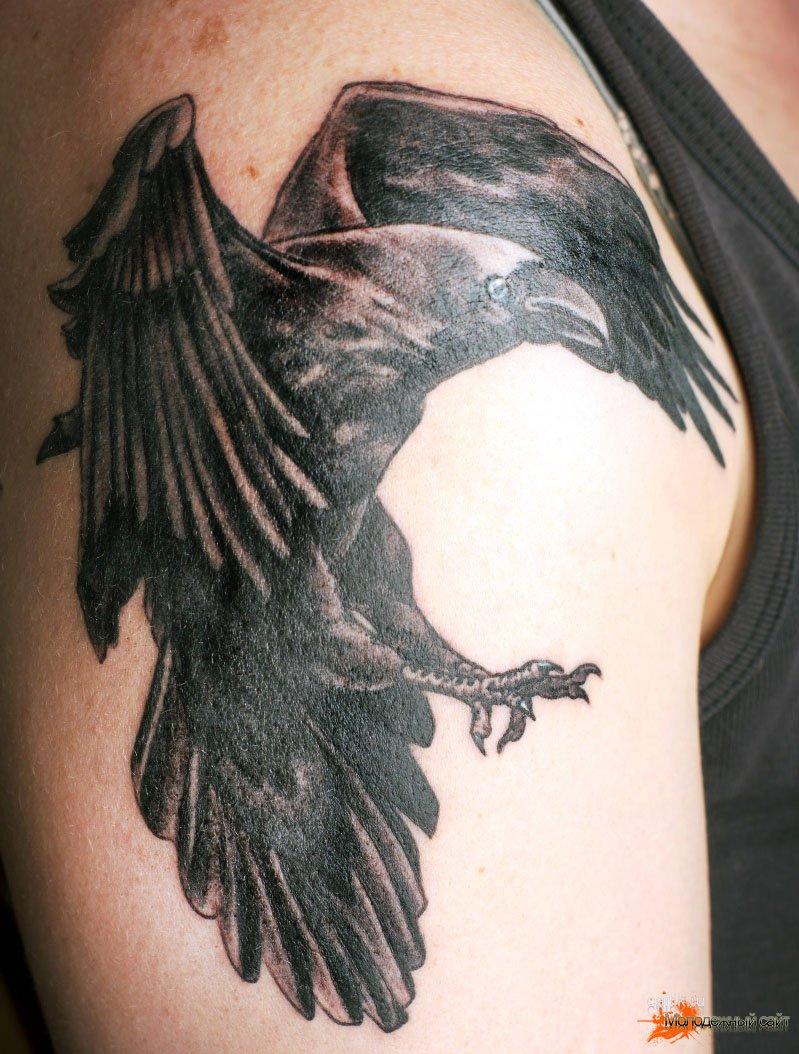 значение татуировки ворон фотографии тату