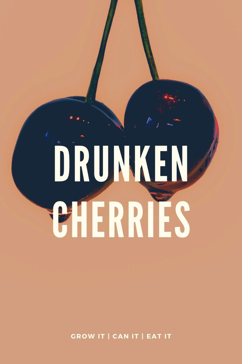 Read more about the article Drunken Cherries