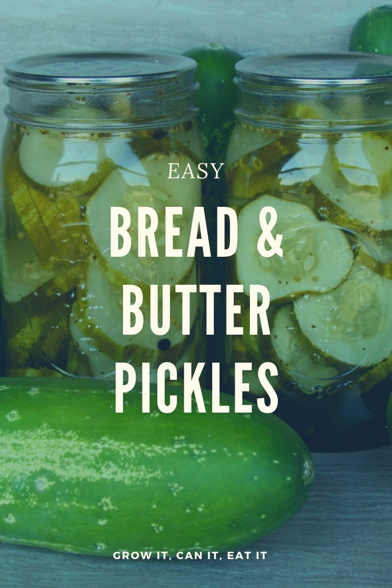 Easy Bread & Butter Pickles