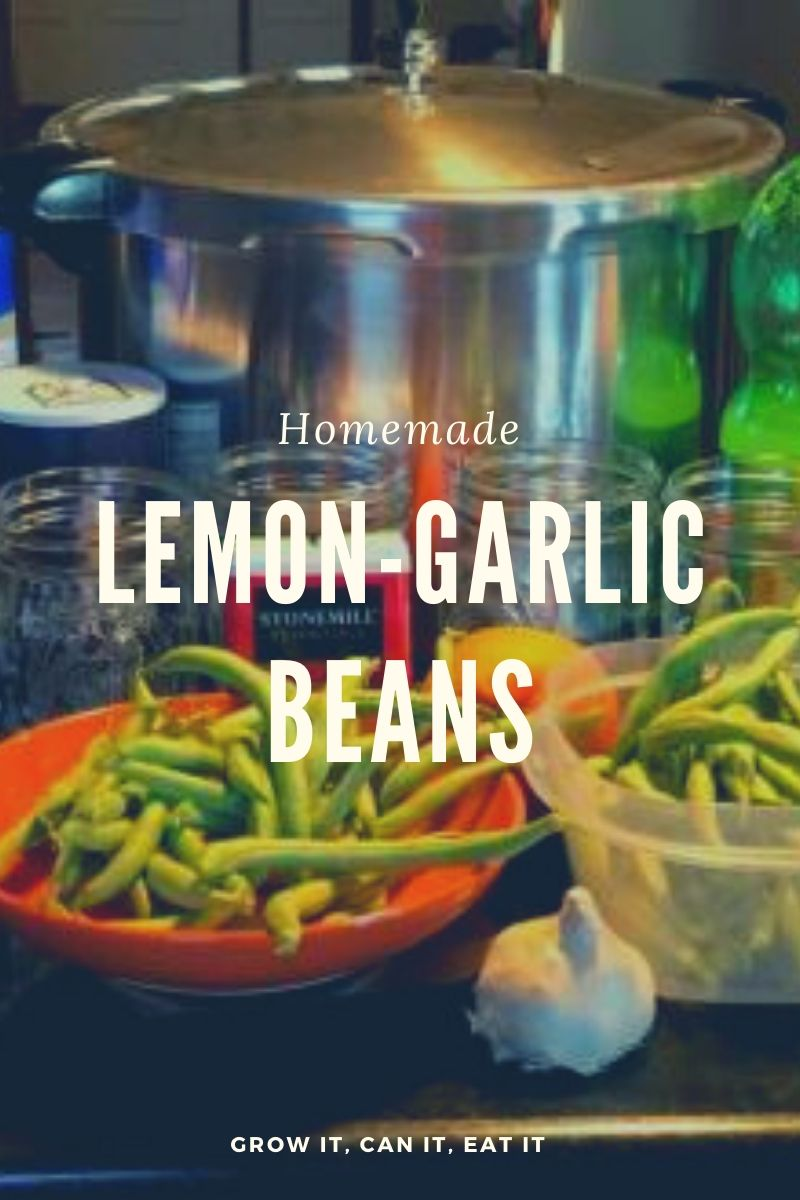 Read more about the article Lemon-Garlic Green Beans