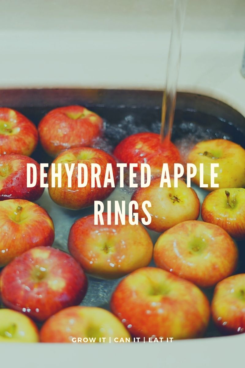 Dehydrated Apple Rings