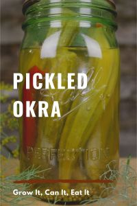 Read more about the article Pickled Okra