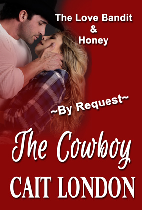 Book Cover: THE COWBOY