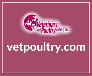 website-content-vetpoultry-caitlyn-andrews