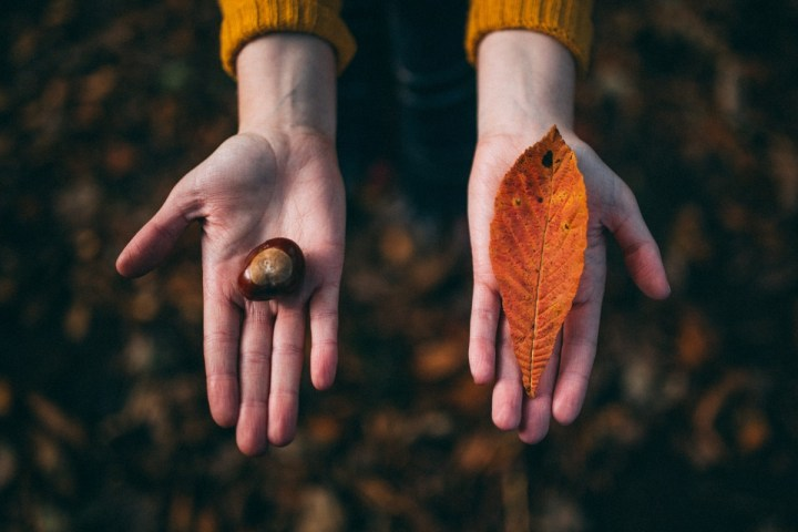 INSPIRED LIVING, MENTAL HEALTH, MINDFUL LIVING MINDFUL LIVING: 7 SIGNS YOUR EGO IS IN THE DRIVER'S SEAT OF YOUR LIFE, AND HOW TO REGAIN CONTROL