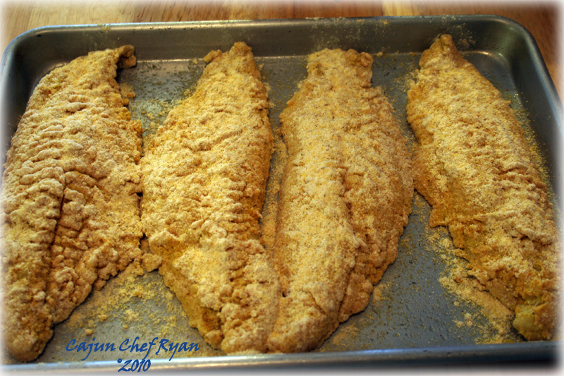 The catfish filets breaded and ready for the oven