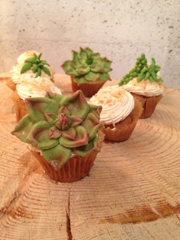 Gluten-free, dairy free toasted coconut succulent cupcakes.