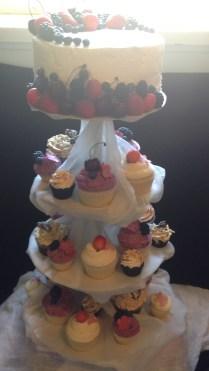 Vanilla sponge cake with cupcakes