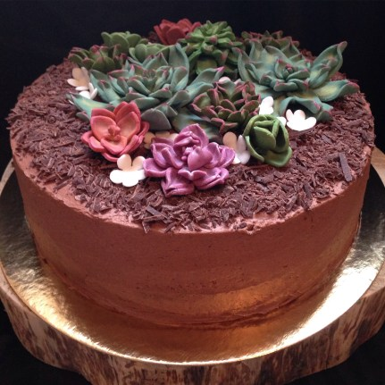 Chocolate berry cake with fondant succulents