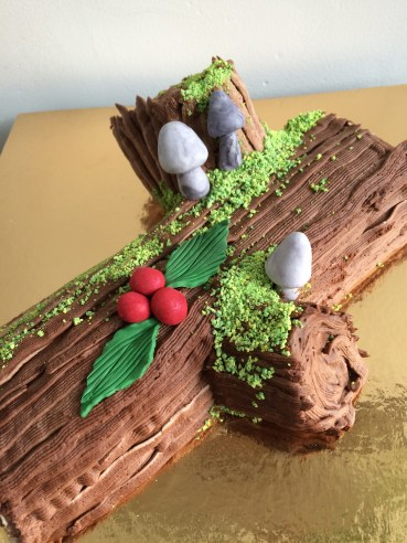 Chocolate berry Yule Log cake