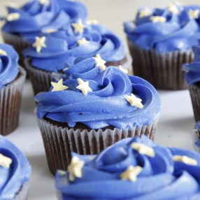 Iced Space Themed Cupcakes