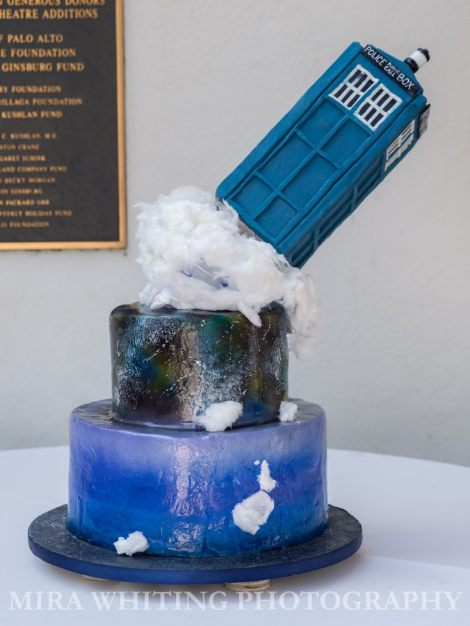 Tardis Wedding Cake by Cake Done Right photography by Mira Whiting