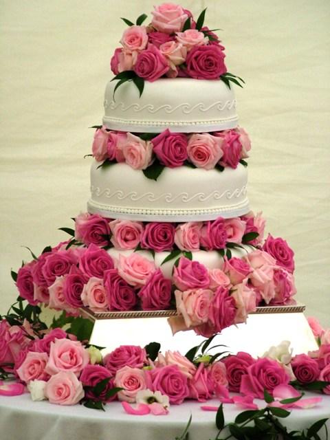 wedding-engagment-designer-concept-cake-cupcakes-2014-mumbai-2