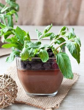 Chocolate Pudding Recipe Pots (For Earth Day)