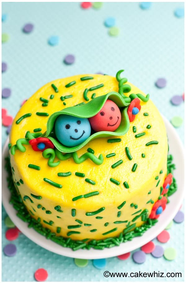 two peas in a pod cake 3