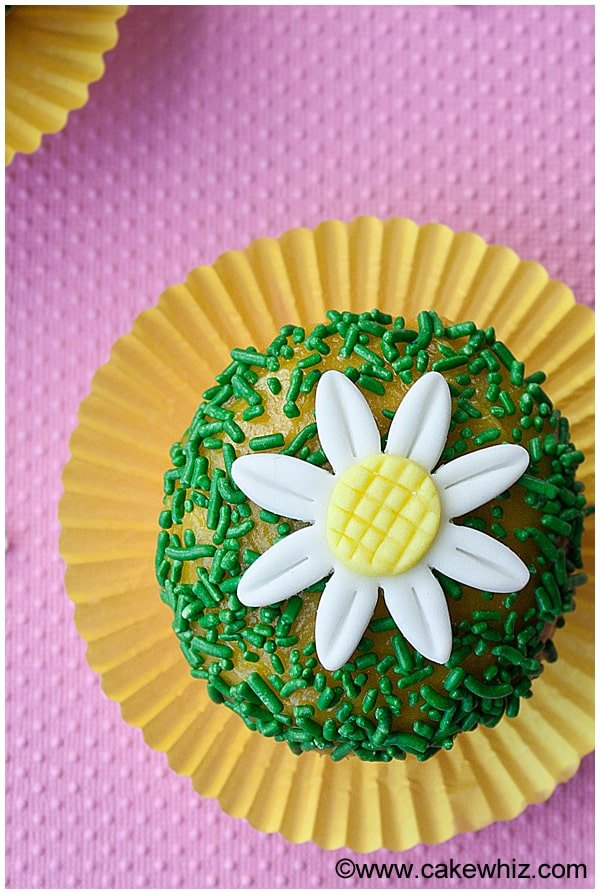 how to make fondant daisies 10
