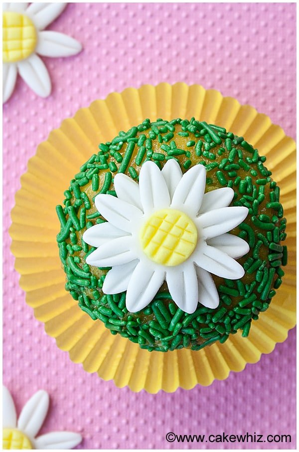 how to make fondant daisies 7