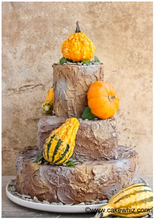 rustic tiered fall cake 1