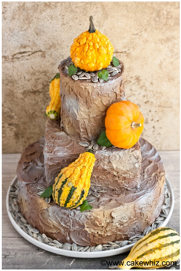 rustic tiered fall cake 2
