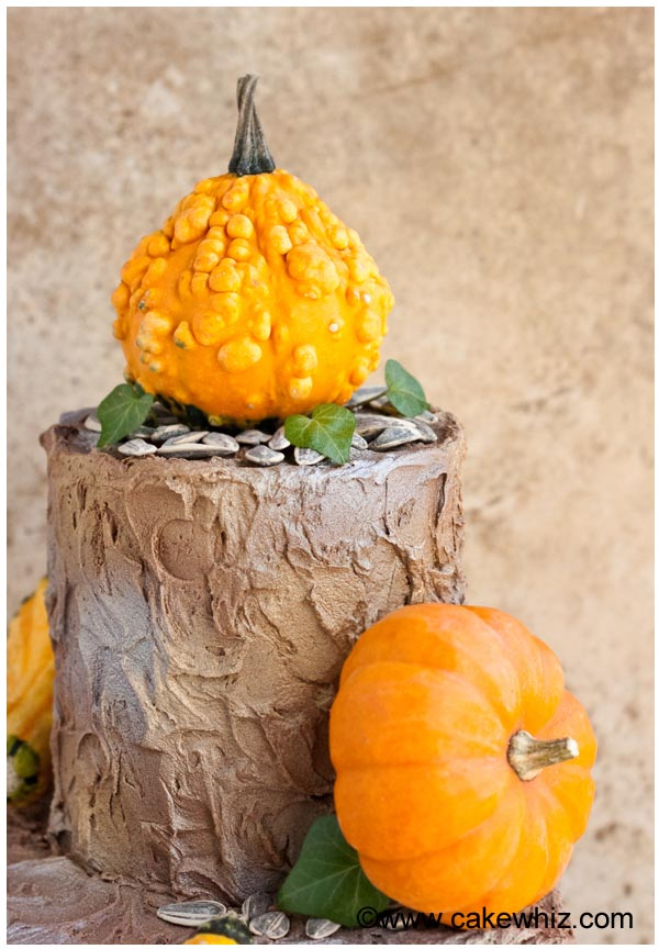 rustic tiered fall cake 6