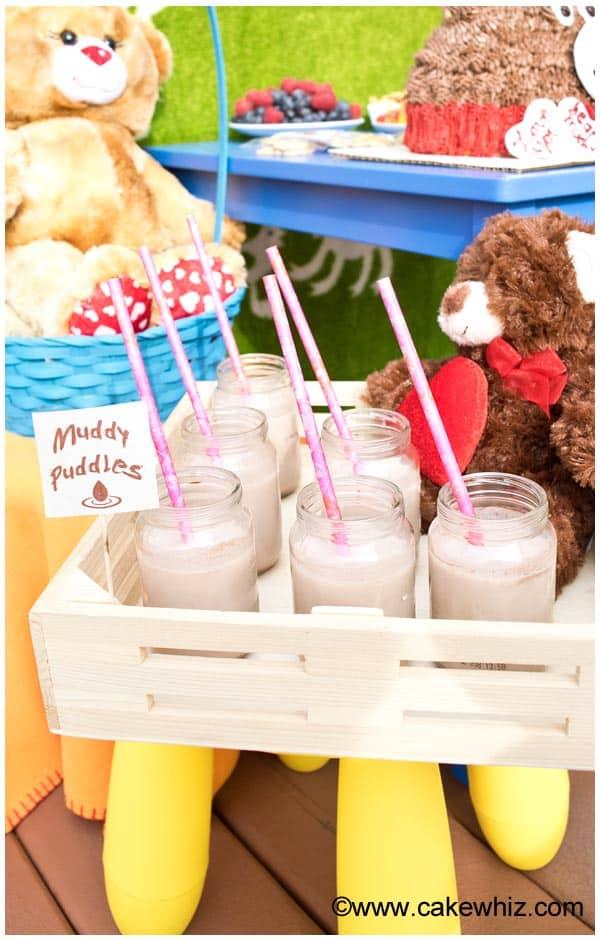 teddy bear party 14
