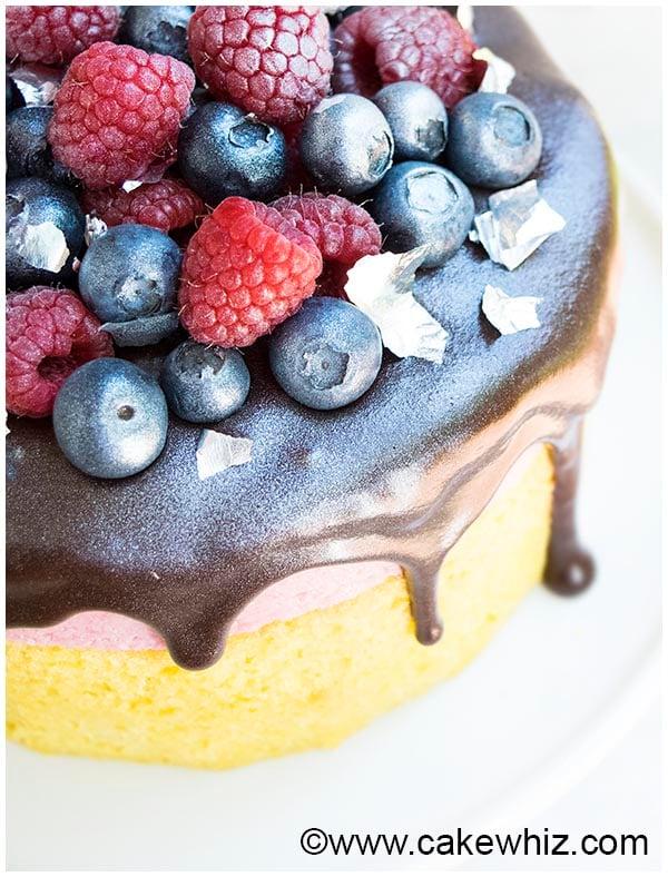 raspberry mousse cake 3