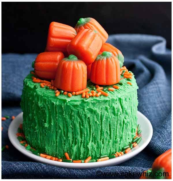 easy cake decorating ideas for beginners 6
