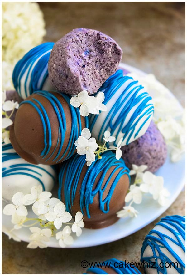 healthy chocolate blueberry truffles recipe 9