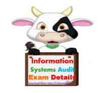 Information System Audit Exam