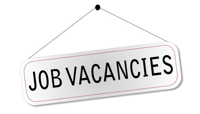 Vacancy For Newly Passed Chartered Accountants