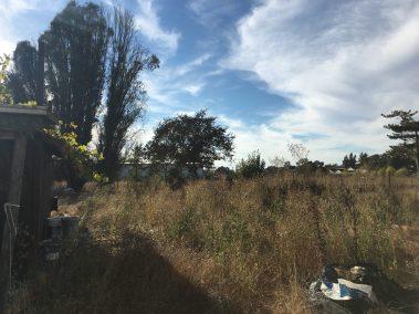 915 Yuba Santa Rosa CA 6