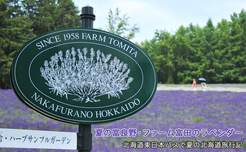 富良野、ファーム富田のラベンダーを見に行く