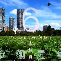 2019年、令和元年6月の暦・お日取り・縁起のいい日、良くない日