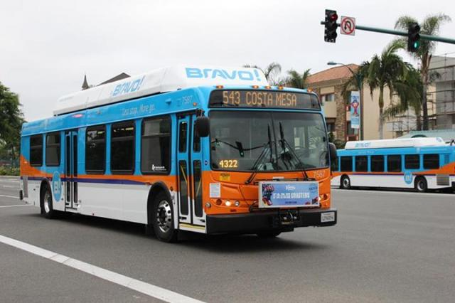Are octa buses running today