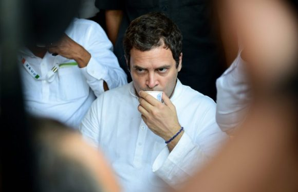 CNBC TV18 Column : Rahul Gandhi's Elections