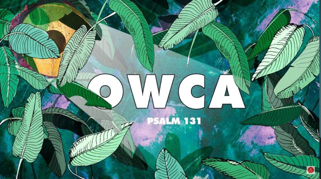 Psalm 131 - Owca / Żywe Chwały