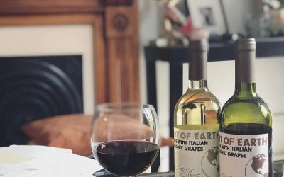 OMG it's ORGanic wine that actually tastes great !! #artofearthwines are made entirely from gently…