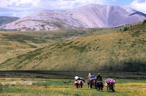 Hiking with saddle horses.