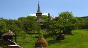 biserica-de-lemn-poienile-izei-2