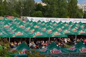 Burger Fest la final