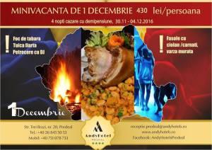 CASTIGA UN SEJUR DE  1 DECEMBRIE LA ANDY HOTELS PREDEAL !