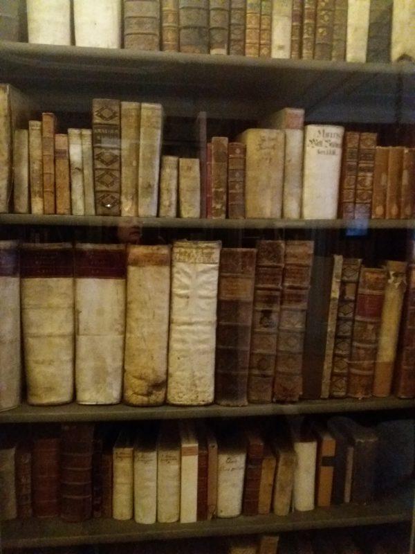 Biblioteca din casa