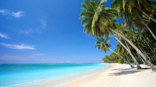 Zanzibarul paradisiac din Africa
