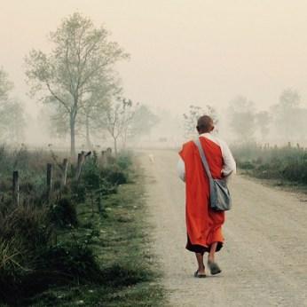4-india-buddhayatra-sq
