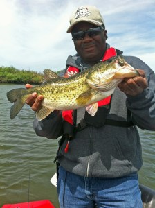 Percy Delta Large Mouth Bass