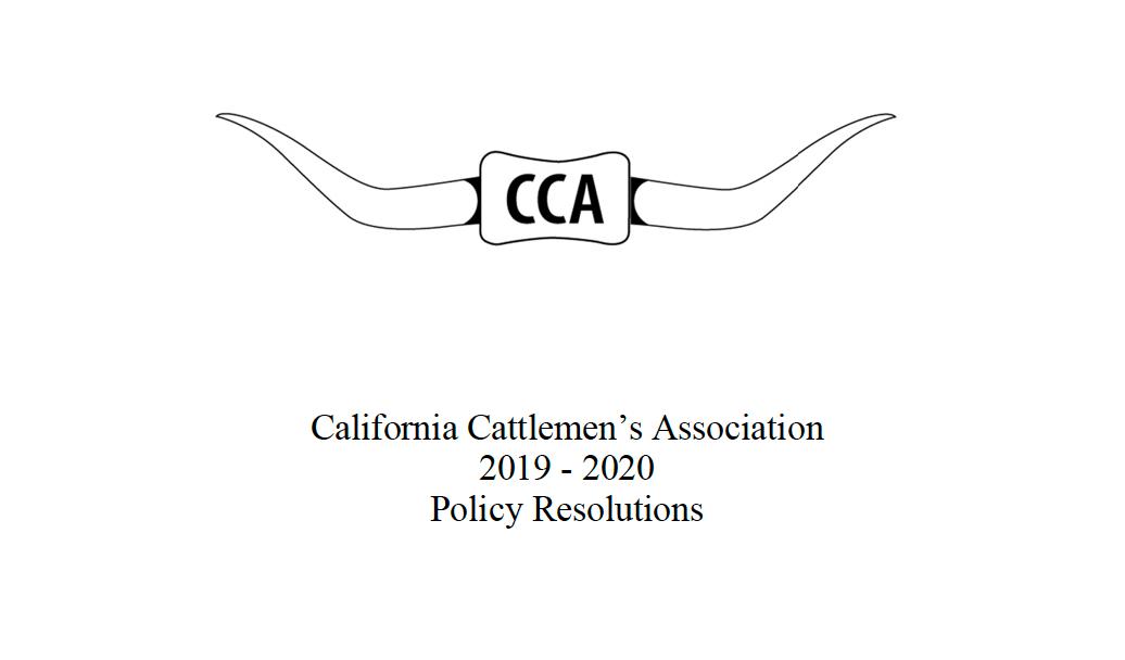 CCA policy book
