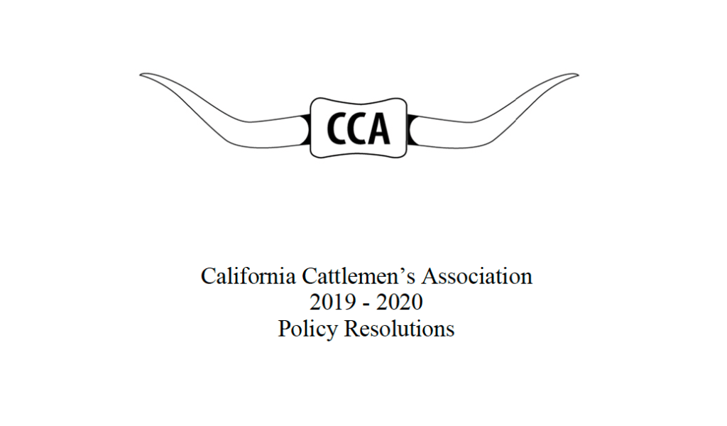 CCA policy book