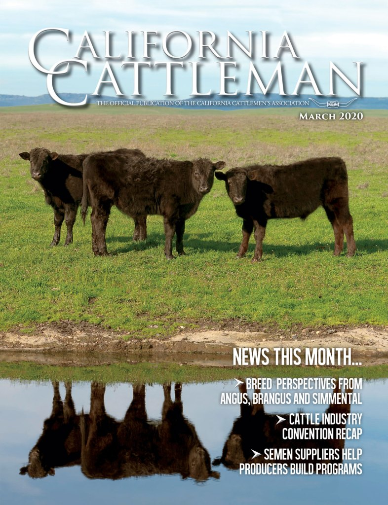 California Cattlemen Cover March 2020